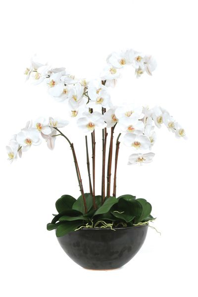White Orchid Silk Flower Arrangement Orchid Flower Arrangements Silk Flower Arrangements