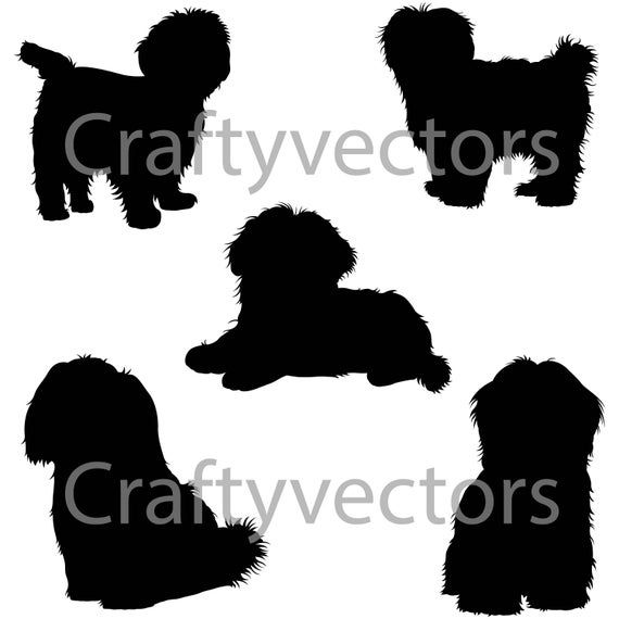 Shih Tzu Short Hair Dog Svg Silhouettes Etsy In 2020 Dog Silhouette Shih Tzu Silhouette Tattoos