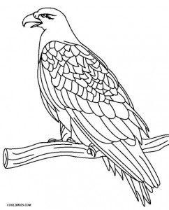 Bald Eagle Coloring Page Bald Eagle Coloring Page Here Home Bald
