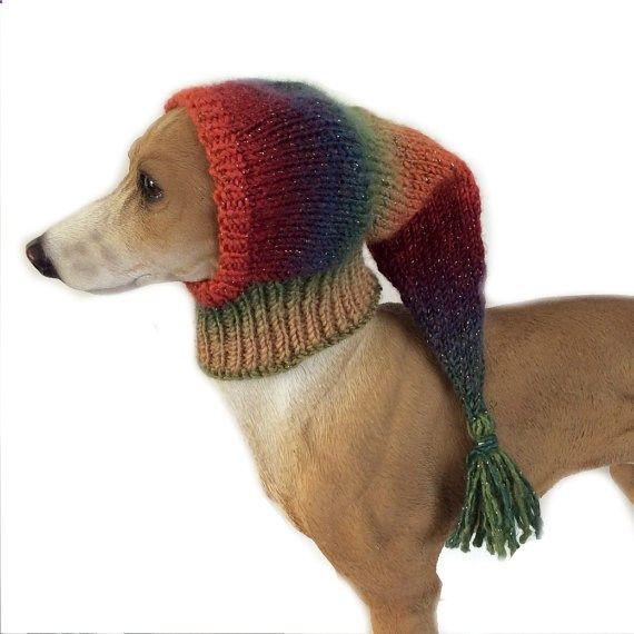 Extra small dog Snood, Orange, italian greyhound snood, whippet ...