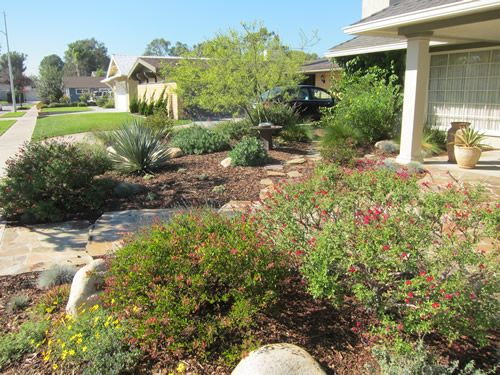 Beautiful And Practical Low Water Use Garden