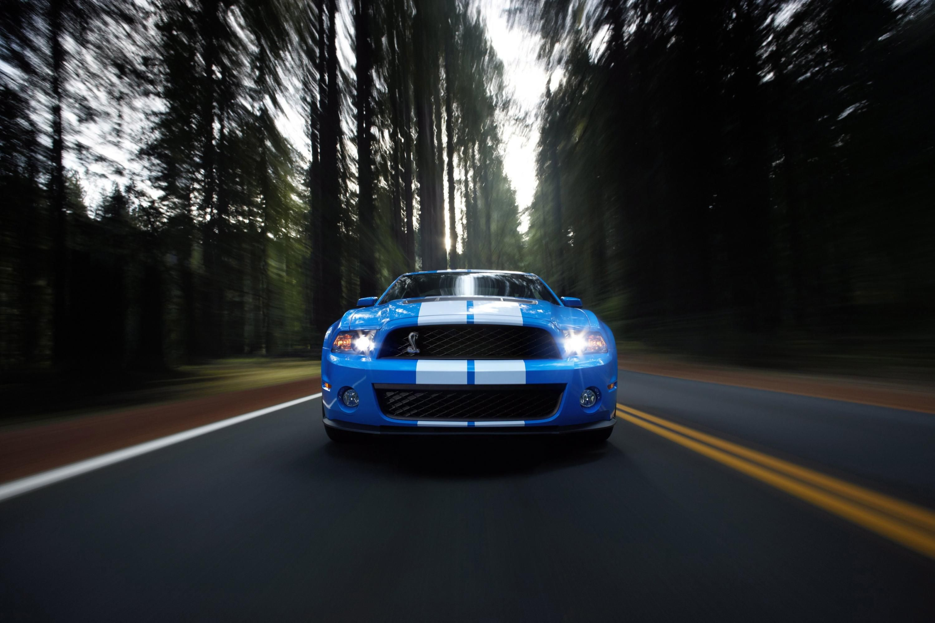 Pin By Cool Wallpapers On Mustangs Ford Mustang Ford Mustang Shelby Ford Mustang Shelby Gt