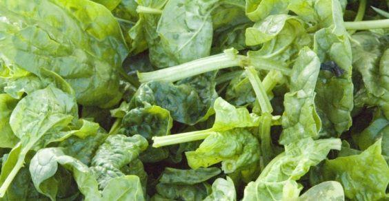 potassio le 10 migliori fonti vegetali