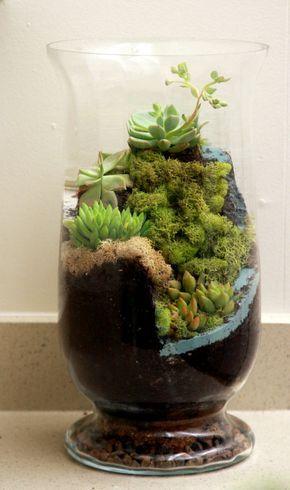 Moss And Succulent Terrarium Diy Garden Succulents Terrarium