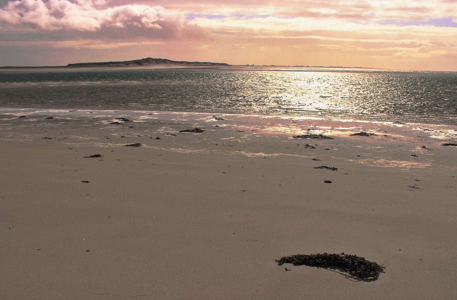 Let's all relocate to Eriskay, start a sheep farm, and wait for everything to blow over.