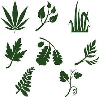 Free SVG Leaves... top left..ha!