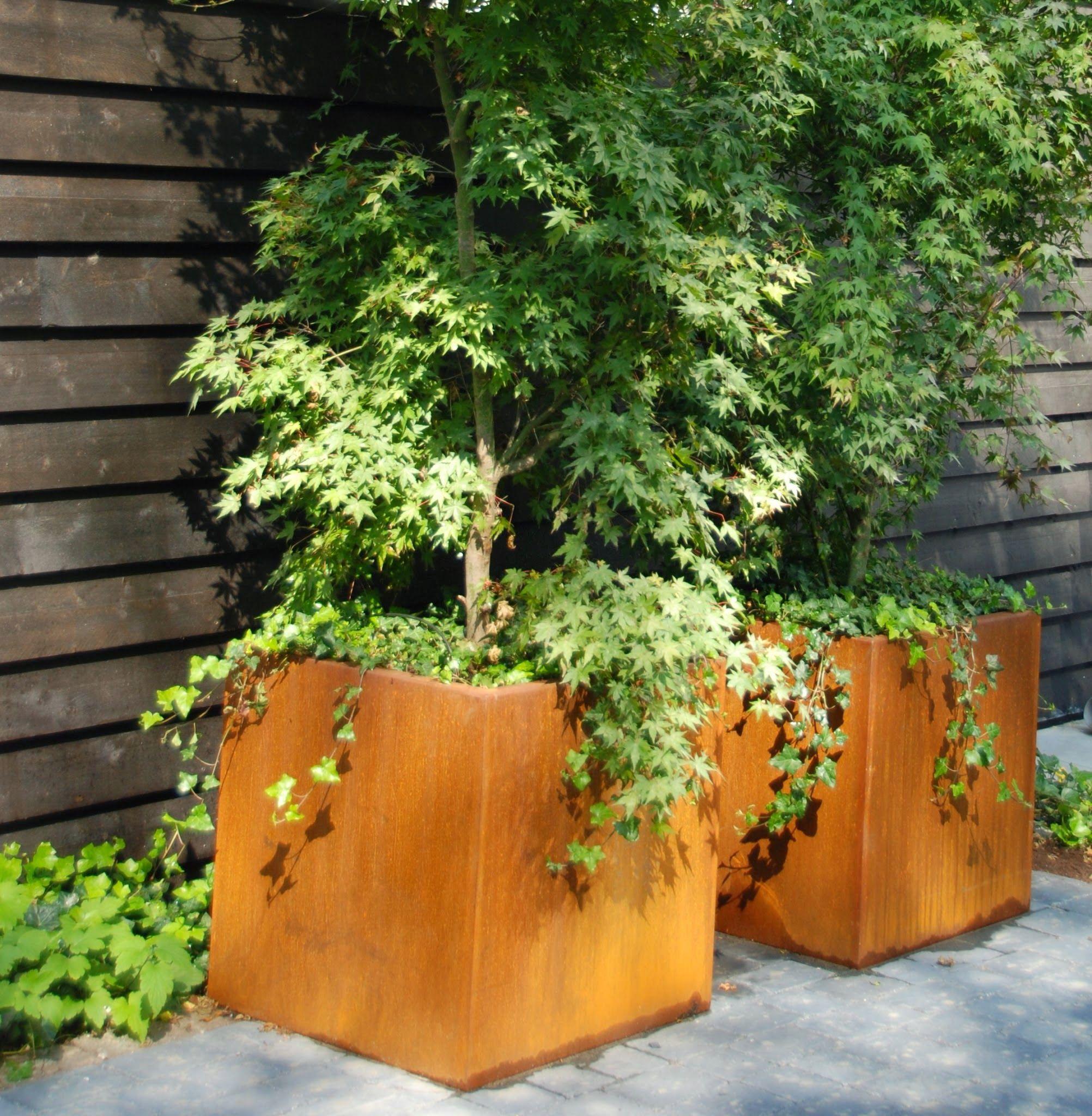 Bac Pour Arbuste De Jardin jardinières en corten pour accueillir des arbustes | idée