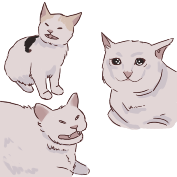 artist rendition Crying Cat in 2020 Cute drawings, Cat