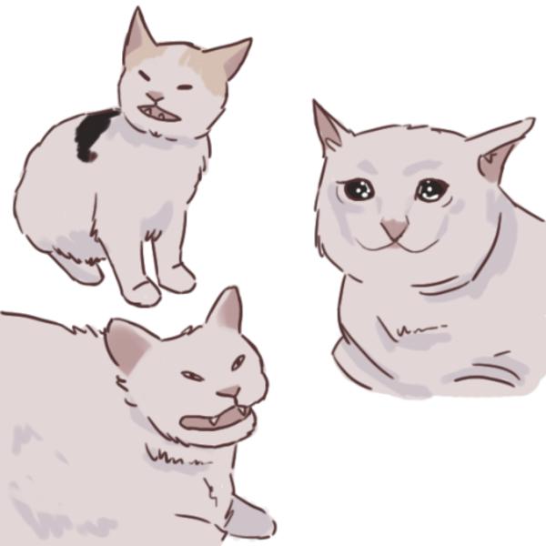Artist Rendition Crying Cat Cat Art Cute Drawings Cute Art