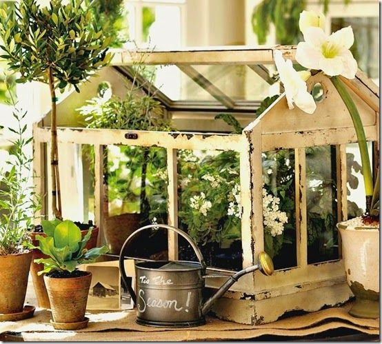 A Beautiful Terrarium Terrariums Pinterest Terraria And Plants