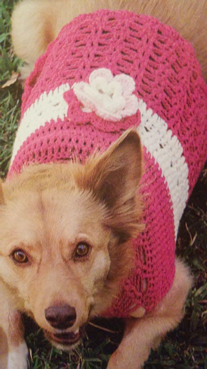 Ropa Para Perros Tejida Al Crochet - $ 200,00 en Mercado Libre ...