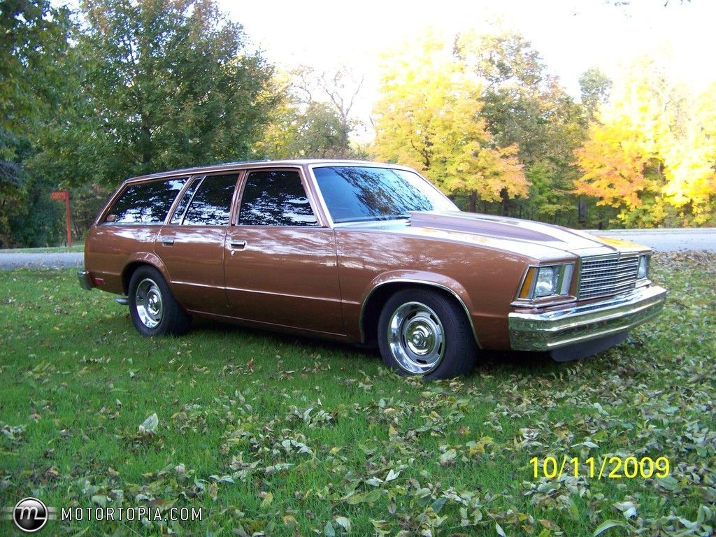 1980 chevy malibu station wagon for sale