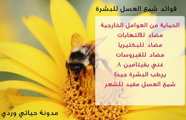 حياتي وردي فوائد شمع العسل للبشرة الأكثر من رائعة Skin Benefits Beeswax Skin
