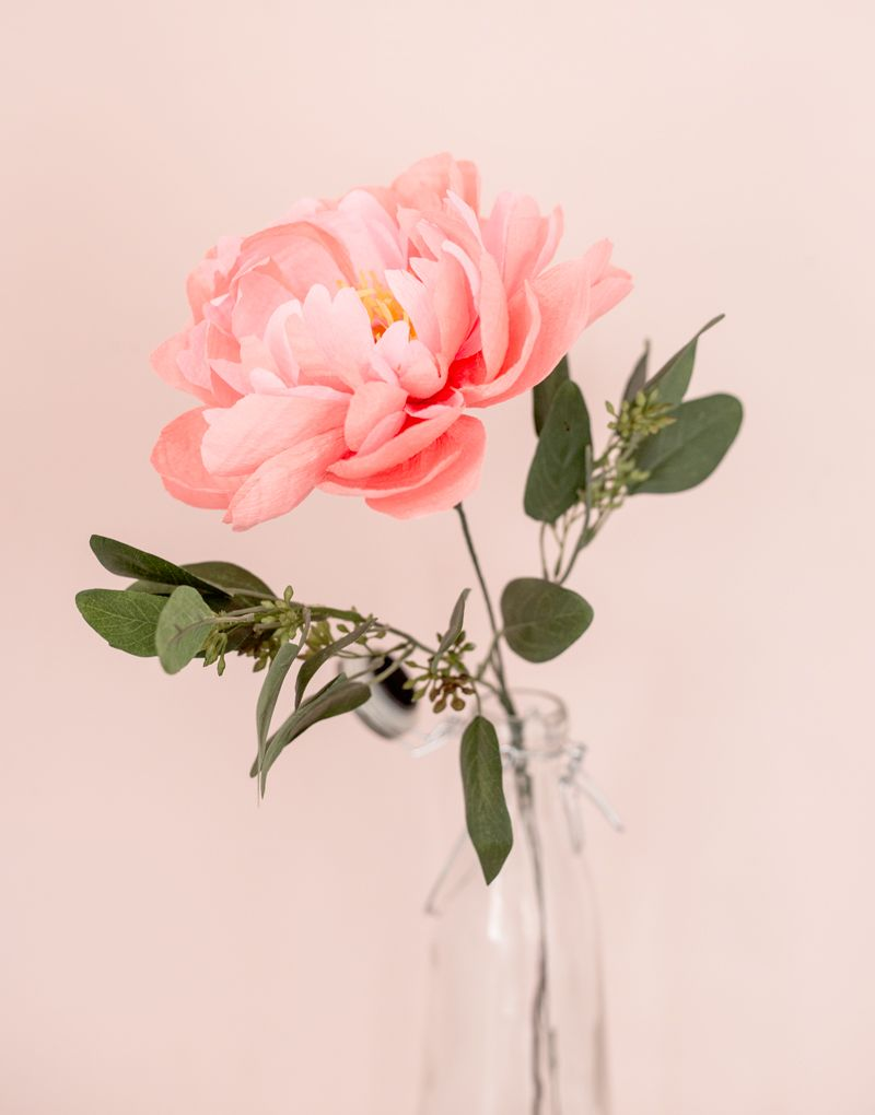 The best paper flower supplies appetite paper paper flowers the best paper flower supplies appetite paper mightylinksfo Choice Image