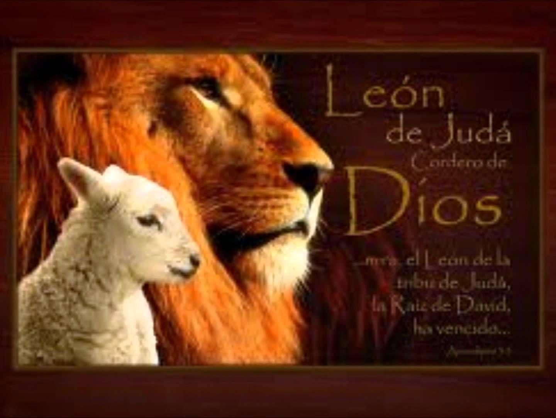 El León y el cordero | Jesús El león de la tribu de Juda | Pinterest ...