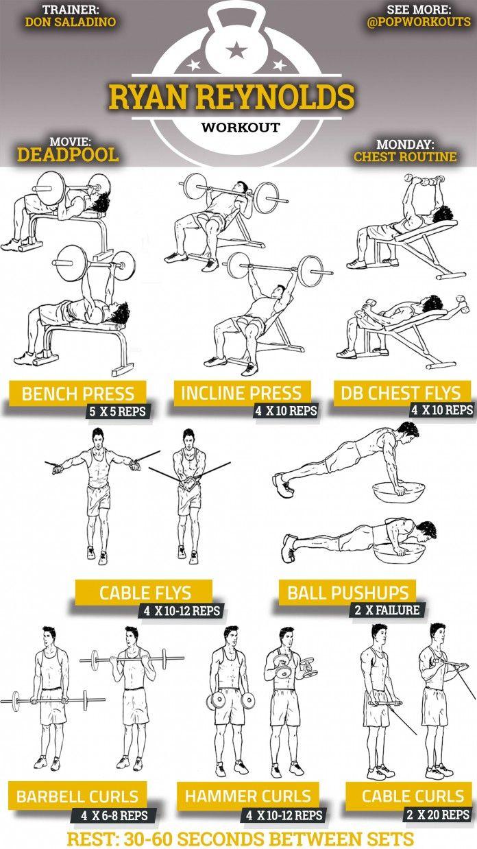 Golds Gym Independent Separately Obstruction   Workout ...  Golds Gym Indep...