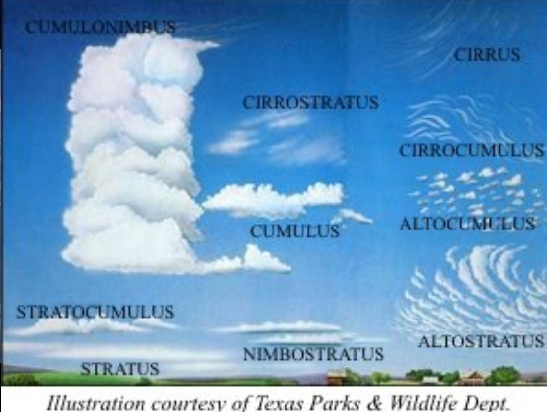 Cloud Types Clouds Cloud Illustration Cloud Type