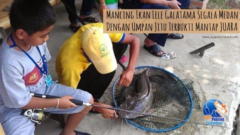 Resep Umpan Olahan Pelet Galatama Lele Terbaru Dengan Menggunakan Pelet Super Aquatic Aroma Amis Yang Sudah Terbukti Mantap Dan Dapat Menambah Babon Ikan Juara