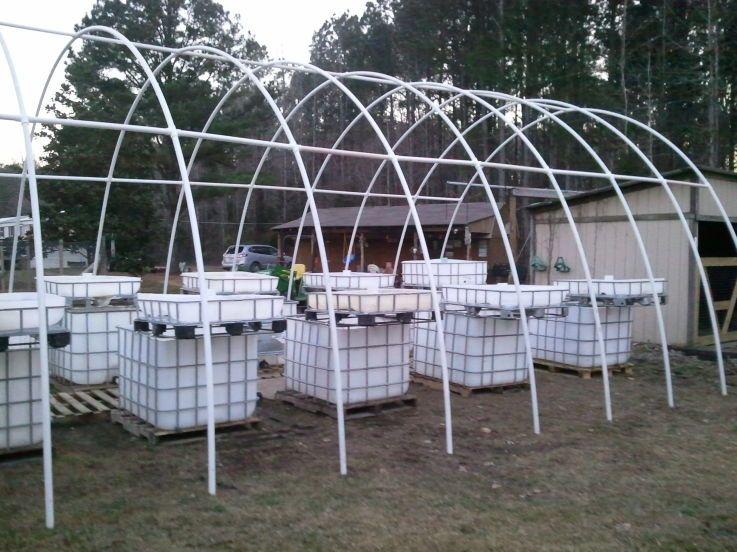 Ibc aquaponics and pvc greenhouse i aquaponics for How to make a greenhouse out of pvc pipe