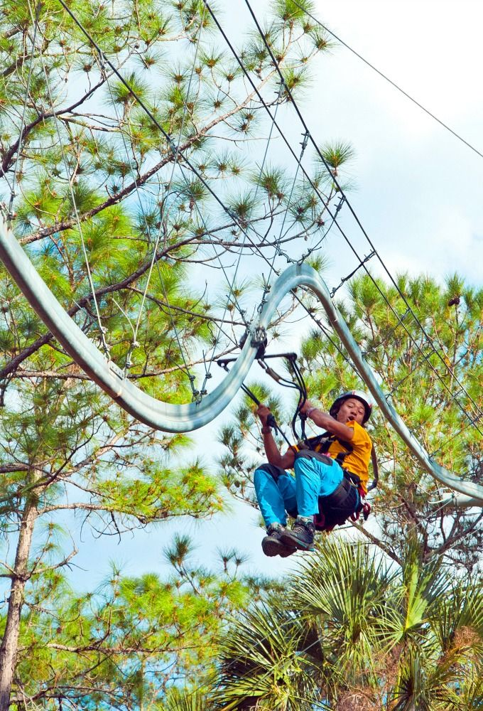 The Rattlesnake Zipline Roller Coaster in Kissimmee, Florida. Yes, we definitely want to try this.