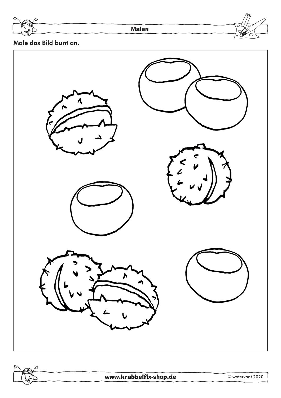 Kastanien Ausmalbild Karlchen Krabbelfix Unterrichtsmaterial In Den Fachern Fachubergreifendes Kunst Ausmalbild Ausmalen Kastanien