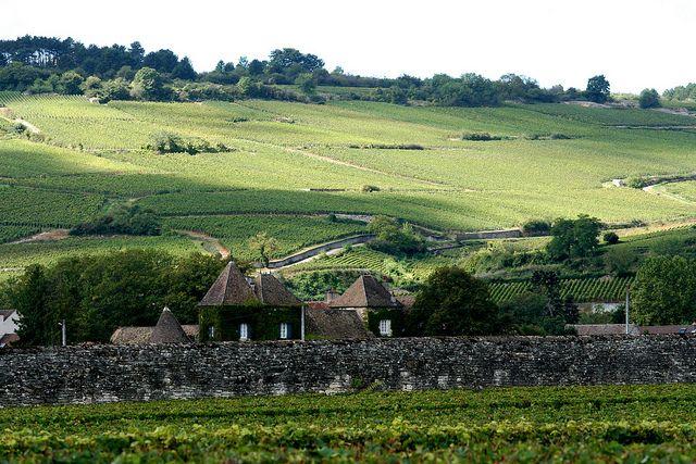 Côte de Beaune, Burgundy by Megan Mallen, via Flickr (Wineries near Dijon France)