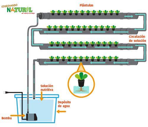 Hidroponico vertical esquema buscar con google for Sistema de riego jardin vertical