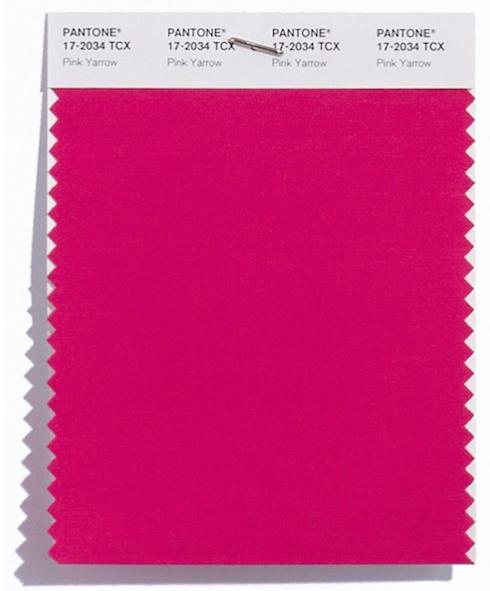Pink Yarrow 17 2034 Http Tatianataurisano Br 2016