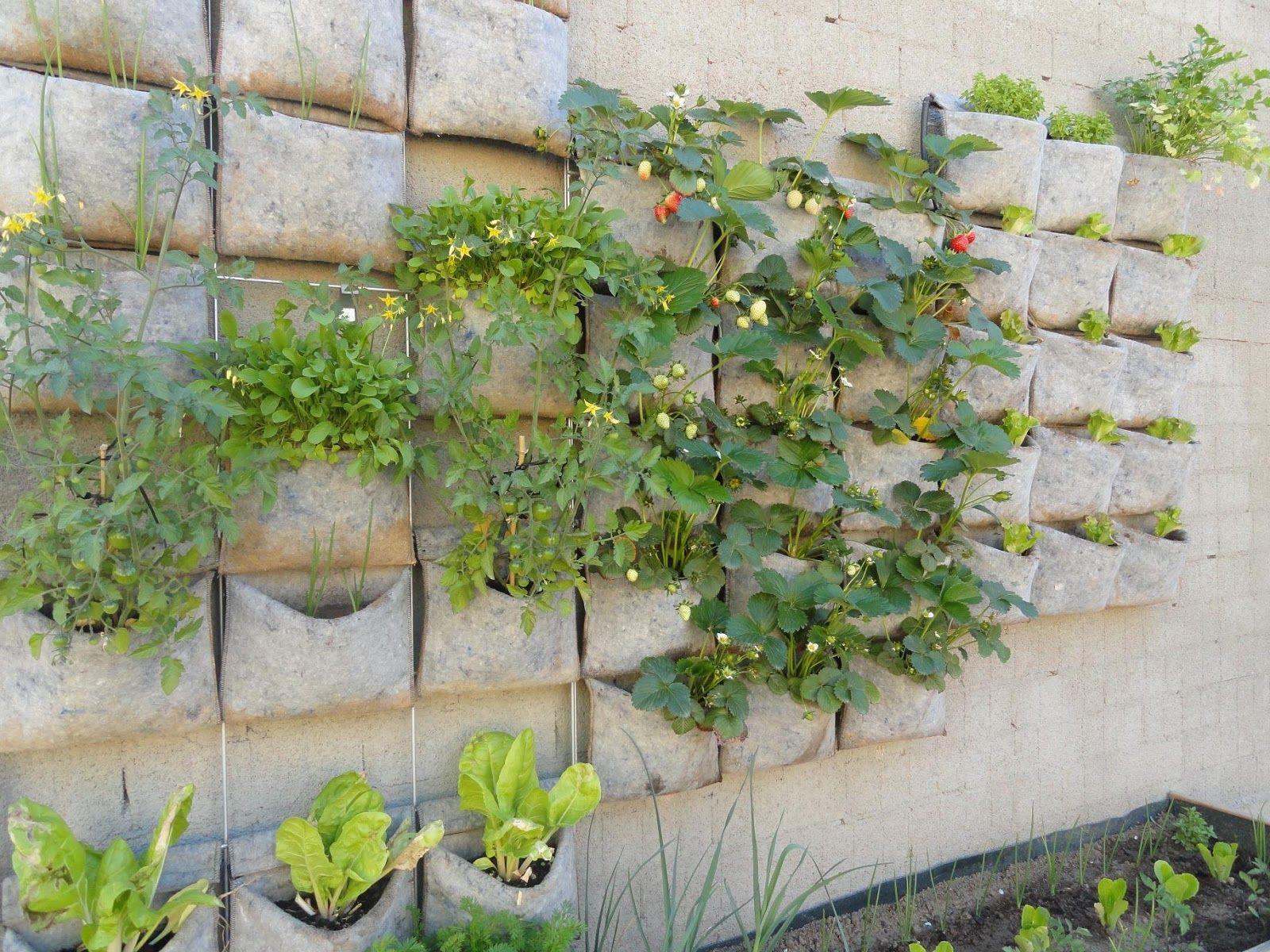 vertical huerto urbano vertical de m dulo para plantas