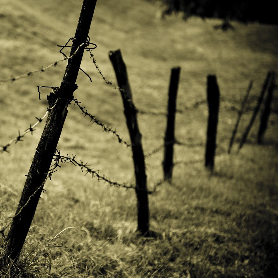 barbed wire fence | Farm life | Pinterest | Barbed wire fencing ...
