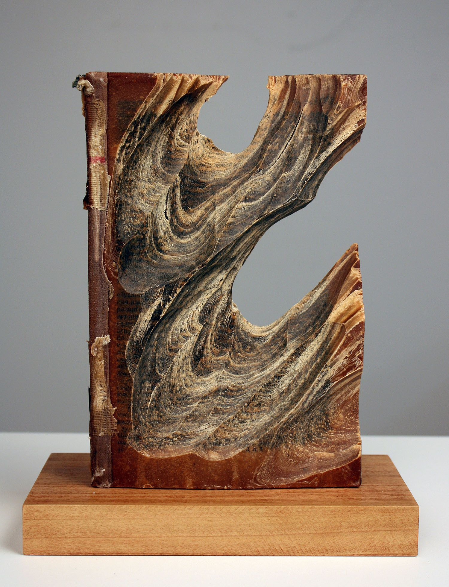 Carved book sculpture by jessica drenk