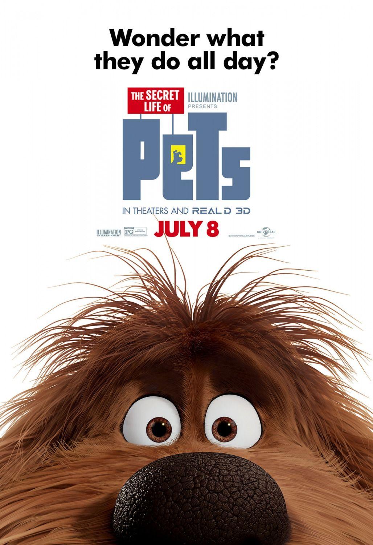 Secret Life Of Pets Cast Meet The Voices Of The Characters Secret Life Of Pets Cast 01 Photo Pets Movie Pet Trailer Secret Life