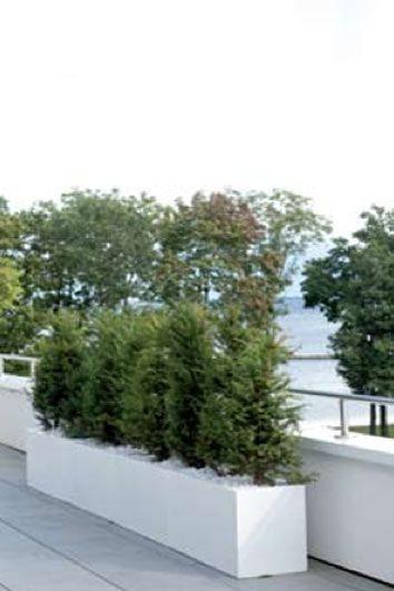 Afbeeldingsresultaat voor plantenbak jort 200 x 30 polyester wit