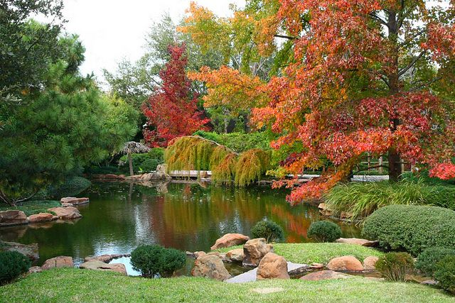 Japanese Garden - Fort Worth | Favorite Places & Cool Spaces ...