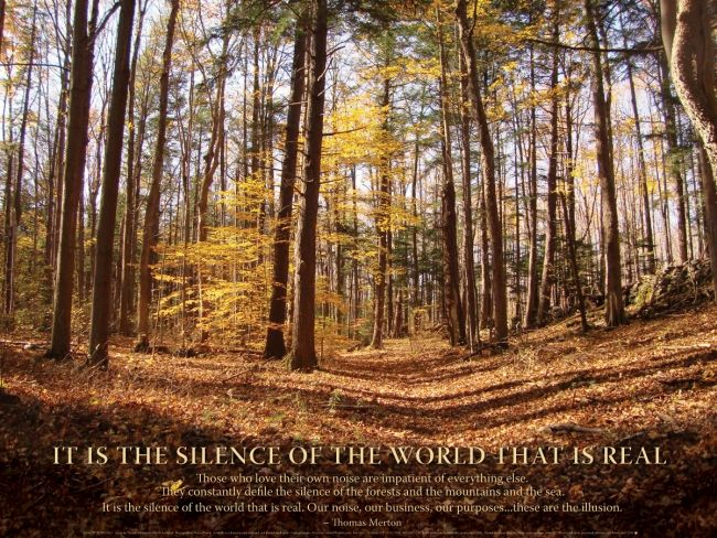 Poster - Silence Of The World | Syracuse Cultural Workers