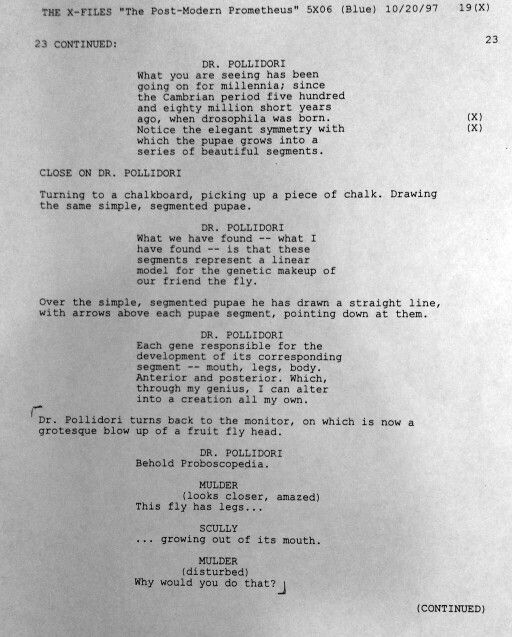 Script from the episode