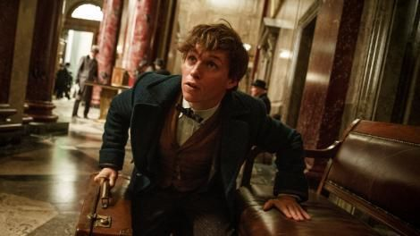 Fantastic Beasts and Where to Find Them trailer pulls us back into the Potterverse -  The new trailer for Fantastic Beasts and Where to Find Them has landed, and takes us back to the wizarding world of Harry Potter, but with a twist. This new film in the Potterverse centres around the adventures of Newt Scamander, former Magizoologist at Hogwarts who must start a new life in New... http://www.technologynews.tvseriesfullepisodes.com/fantastic-beasts-and-where-to-find-them-trai