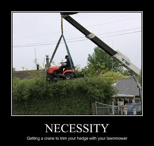 Funny Memes About Yard Work Funny Pictures Live Long Dumb And Dumber