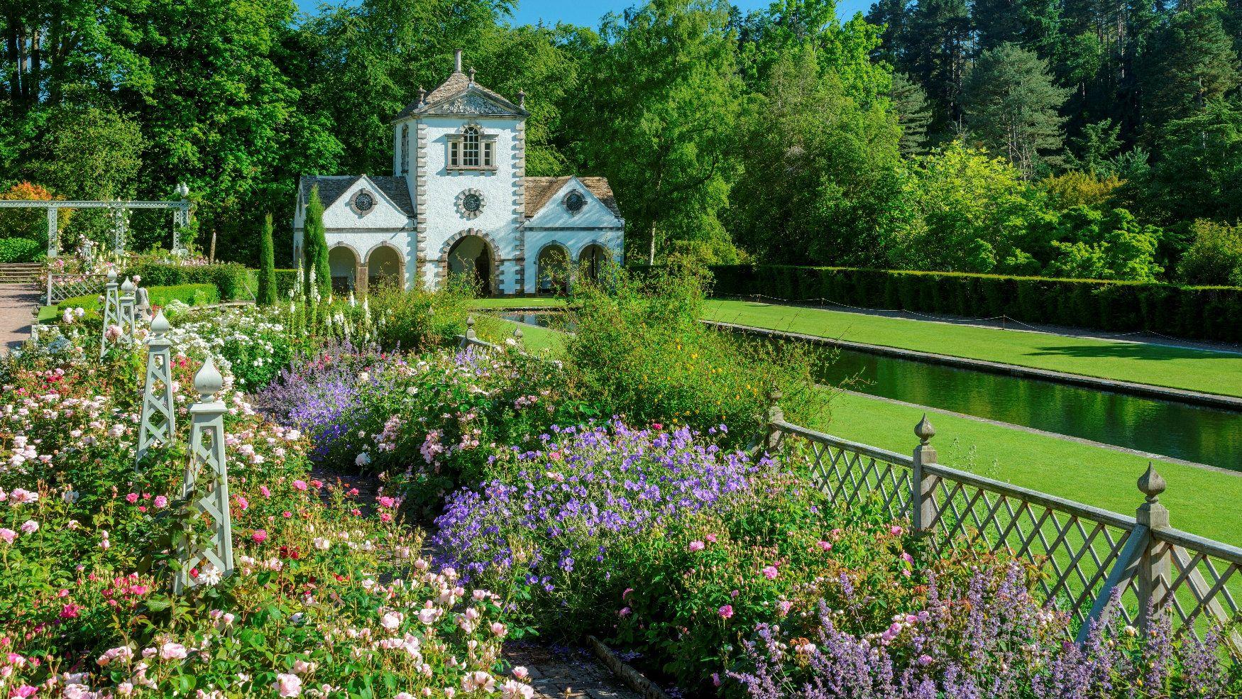 Pin by Sandiya Jain on Blogs Cedar garden, Summer garden