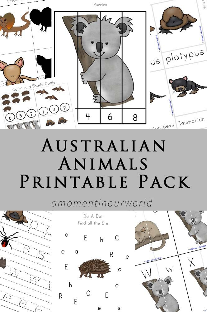 Australian Animals Printable Pack Australian Animals Australia Crafts Australia Animals