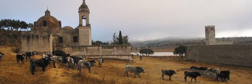 Operadores turísticos promueven las haciendas ganaderas en Tlaxcala. |  Turistico, Turismo, Haciendas