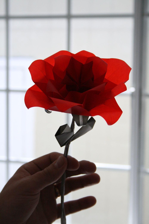 Origami Rose A Single Translucent Elegant Origami Flower Folded
