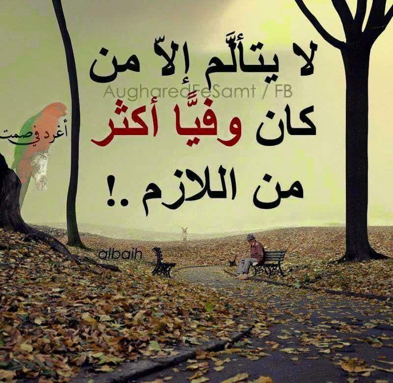 حقيقـــه اااااااااااااااااي والله صدق Proverbs Home Decor Decals Arabic Calligraphy