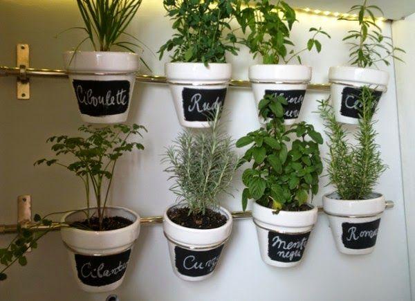 Un huerto con plantas arom ticas en el interior de casa for Plantas aromaticas de interior
