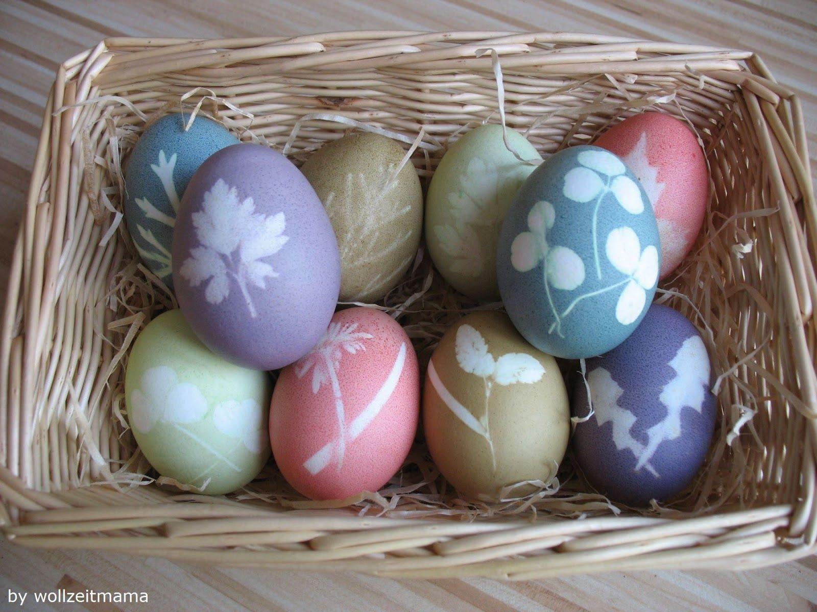Ostereier färben mit Blättern, Anleitung kostenlos