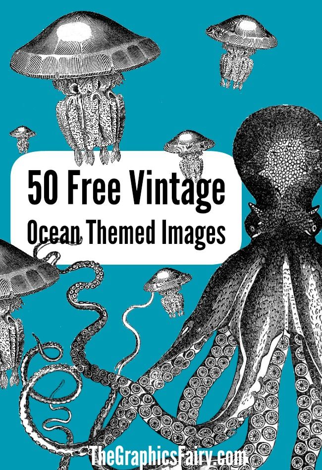 image regarding Printable Graphics named 50 Totally free Ocean Themed Graphics! Classic Graphics + Ephemera