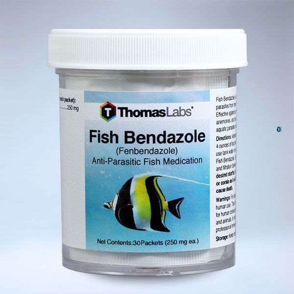 Health Care 177798: Fenbendazole Powder Fish Bendazole (250Mg, 30 Packets) Fresh -> BUY IT NOW ONLY: $32.99 on eBay!