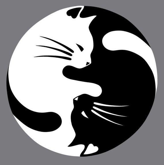 Cat yang decal Etsy in 2020 Cat decal, Cat art, Cat