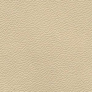 Nappa leather - colour - Barley by Ruskin Design for custom car interiors