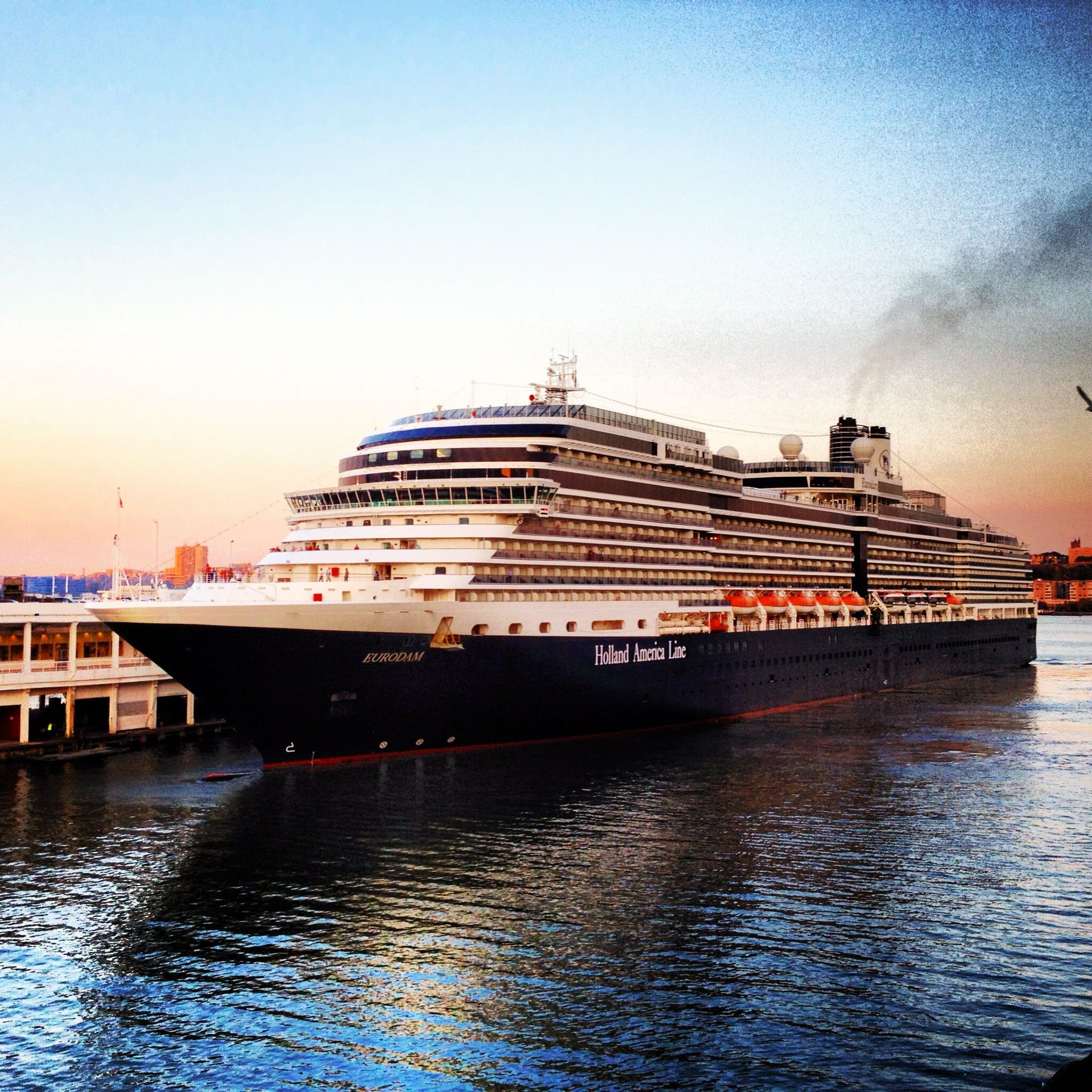 Ship Ms Eurodam Holland America Pinterest Holland America - Eurodam cruise ship